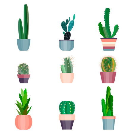 Set of high quality cartoon cactus for your design with succulent plants. Plant for your project. Cute flat cartoon cactus nature collection. Graphic illustration