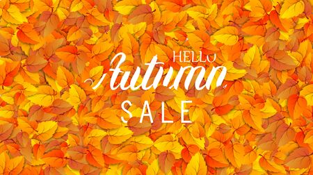 Hello autumn sale lettering banner. Special offer discount poster with fall golden leaves. Autumn seasonal design template shopping advertising promotion. Vector illustration ad sale
