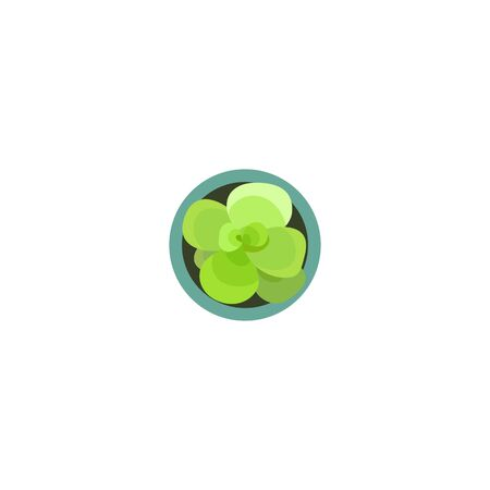 Top view green plants in pot for landscape design projects or architecture plan. Isolated flower on white background. Vector illustration
