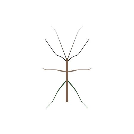 Insect icon in flat style isolated on white background. Vector illustration Foto de archivo - 129794379