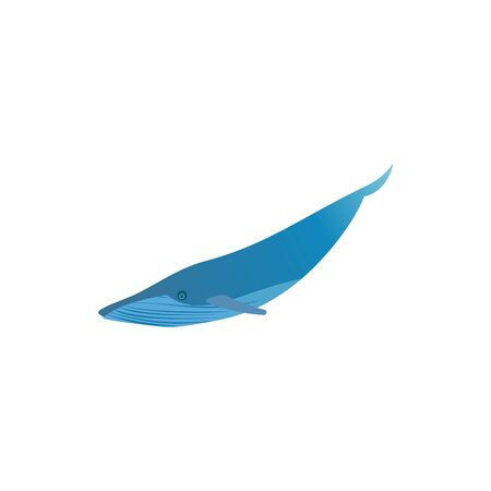Blue whale icon isolated on white background. Vector ocean fish illustration