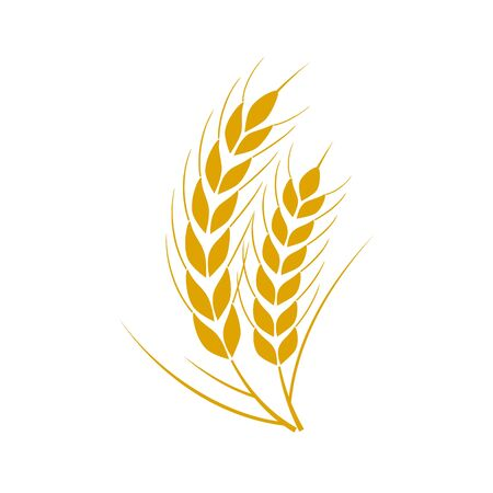Set of simple wheats ears icons and wheat design elements for beer, organic fresh food corn farm, bakery themed agriculture design, grain element, wheat simple pattern. Vector illustration Vector Illustratie