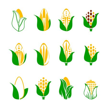 Corn icons set isolated on white background. Rye seed with green leaf. Vector illustration