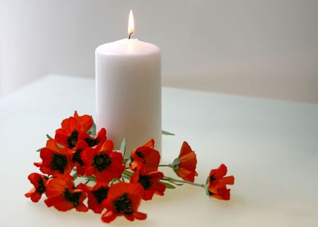 intentionally soft Flanders poppies with candle to commemorate Remembrance, Armistice, Poppy, Veterans Day photo