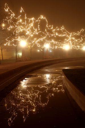 suspens: Misty effet de brouillard sur les lumi�res: mini-s�ries de vacances dans les arbres, parc andamp, amp, �clairage
