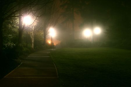 misty, moody effect of fog on park andamp,amp, street lights