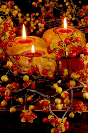 fresh autumn bittersweet vines with berries just popped as table wreath; mini pumpkins with candles   Stock Photo
