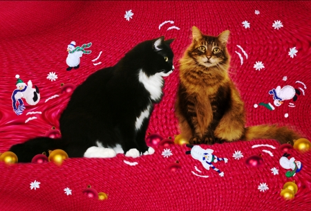 frolic: Christmas cats-vintage Christmas sweater inspired playful background with tuxedo and tabby cat