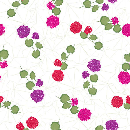 Vector Geranium Flowers in Pink Red Purple with Green Leaves on Stems on White Background Seamless Repeat Pattern. Background for textiles, cards, manufacturing, wallpapers, print, gift wrap and scrapbooking. Vector illustration in eps10 and jpeg for surface design.