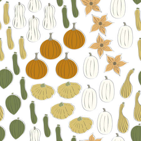 Vector Vegetables Squash Pumpkins in Orange Green Yellow White Scattered on White Seamless Repeat Pattern. Background for textiles, cards, manufacturing, wallpapers, print, gift wrap and scrapbooking.