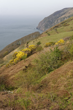 Elwill Bay, Trentishoe, North Devon Coast South West Coast Path