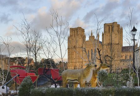 Santa's Reindeer and Sleigh at Wells Cathedral
