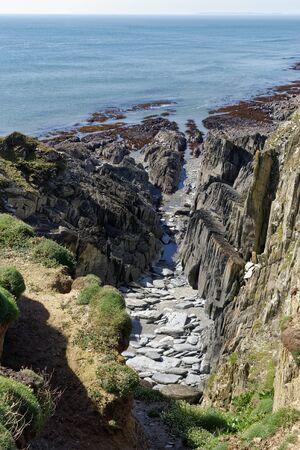 Cliffs with vertical rock strata at Windy Cove, Morte Point, North Devon