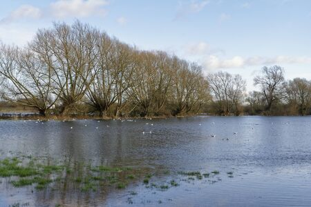 Flooded Farmland at Cricklade, Wiltshire Home of the rare Snakes-head Fritillary