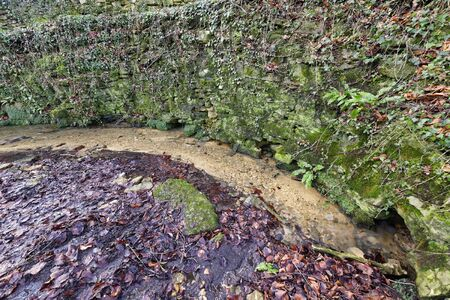 Seven Springs - The Source of the River Churn and Thames furthest from the mouth, in Gloucestershire