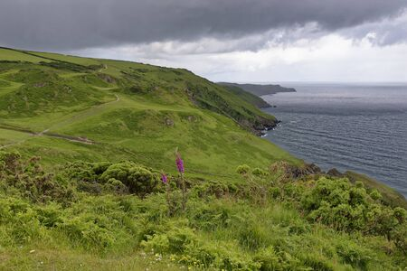 North Devon Coast from Torrs Park  View west from Seven Hills towards Flat Point, Ilfracombe, Devon, UK 写真素材