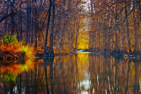 autumn trees along reflective river Banco de Imagens