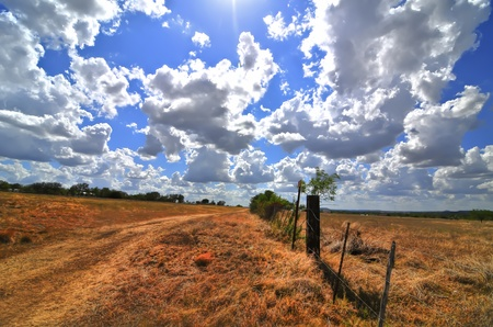 wood fence: wheatfields and blue skies, texas hillcountry Stock Photo