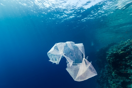 A discarded plastic bag floats in open ocean near a tropical coral reef