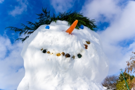snowscene: Head of a snowman with blue sky background