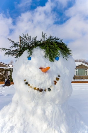 snowscene: A smiling snowman with a fern branch for hair with blue sky behind