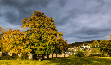 Autumn trees and stormy skies near a small village