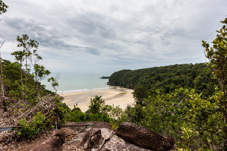 deserted: Deserted sandy beach surrounded by tropical rainforest