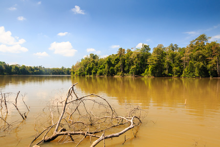 Large muddy lake in the tropical rainforest photo
