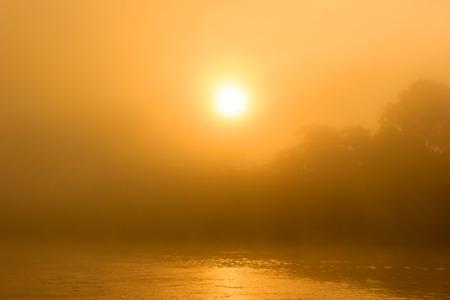 Sunrise through mist over a tropical rainforest river photo