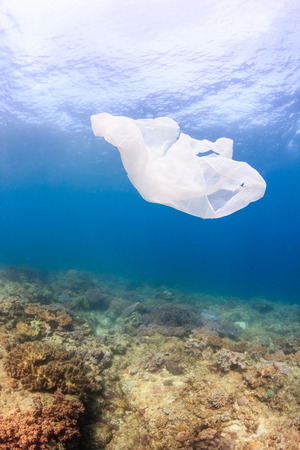 causing: Waste plastic bag drifts over a tropical coral reef causing a hazard to marine life