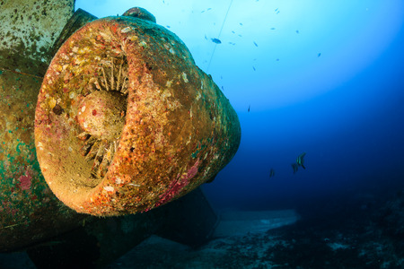 holiday blockbuster: The rusting remains of a jet engine and aircraft deep underwater