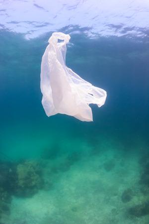 녹색 물과 죽은 해저 위에 떠있는 쓰레기 비닐 봉투. 인공 오염은 해양 생태계에 큰 영향을 미치고있다 스톡 콘텐츠