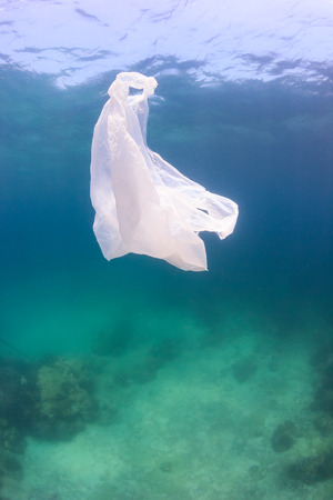 Waste plastic bag floating above green water and a dead seabed.  Manmade pollution is having a dramatic effect on ocean ecosystems