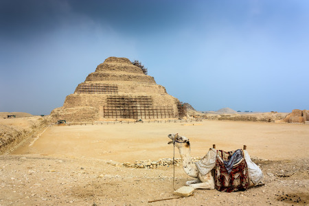 masr: A camel in front of the ancient step pyramid of Saqqara on a stormy afternoon