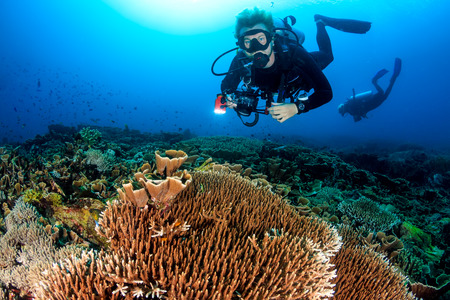 SCUBA diver with a camera swims over a colorful tropical coral reef