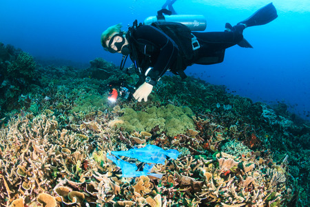 discarded: A SCUBA diver swims over a discarded plastic bag tangled on a coral reef