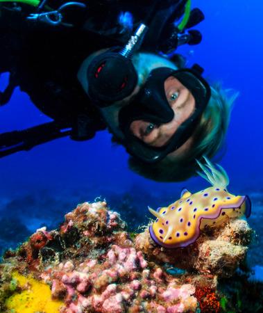스쿠버 다이버는 열대 산호초에있는 다채로운 Nudibranch를 검사합니다.