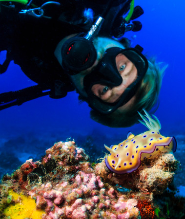 SCUBA diver examines a colorful Nudibranch on a tropical coral reef