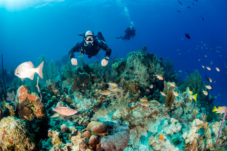 SCUBA diver in a technical sidemount cofiguration on a tropical coral reef Zdjęcie Seryjne