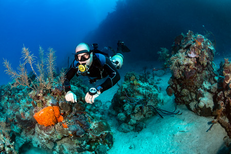 SCUBA diver in a technical sidemount cofiguration on a tropical coral reef Imagens