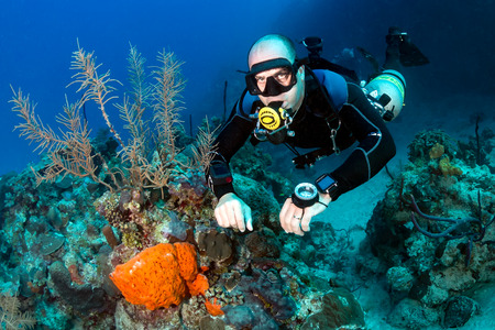 SCUBA diver in a technical sidemount cofiguration on a tropical coral reef Stock Photo
