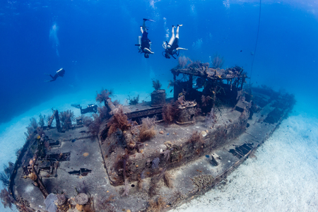 SCUBA divers playing around an old, encrusted underwater shipwreck