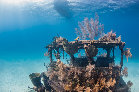 Coral and sponge encrusted shipwreck on the sea floor Stock Photo