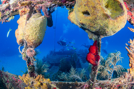 SCUBA Divers Swimming Around an Old, Coral Encrusted Shipwreck