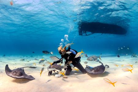 SCUBA-duiker die met Pijlstaartroggen in ondiep water spelen