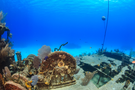 adventure holiday: Small, coral encrusted underwater shipwreck