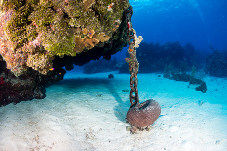 ship anchor: An anchor chain from a cruise ship carelessly dropped causing damage to an otherwise healthy tropical coral reef. Careless dropping of anchor is a serious threat to shallow water reef around the world
