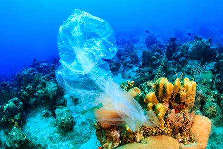 플라스틱 오염 - 폐기 된 플라스틱 쓰레기 봉투가 해양 생물에게 해를 끼치는 열대 산호초에 뜬다. 스톡 콘텐츠