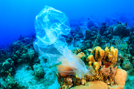 Plastic pollution:- a discarded plastic rubbish bag floats on a tropical coral reef presenting a hazard to marine life Imagens