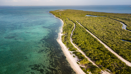 Aerial view of a remote tropical beach surrounded by forest